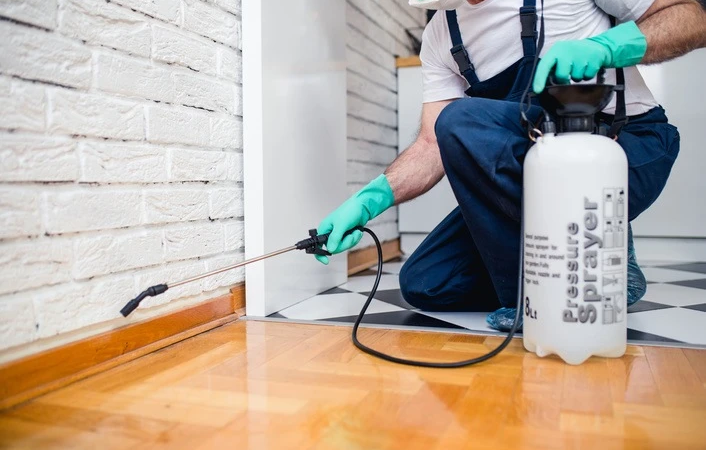 Finding The Right Lakeside CA Pest Control Company