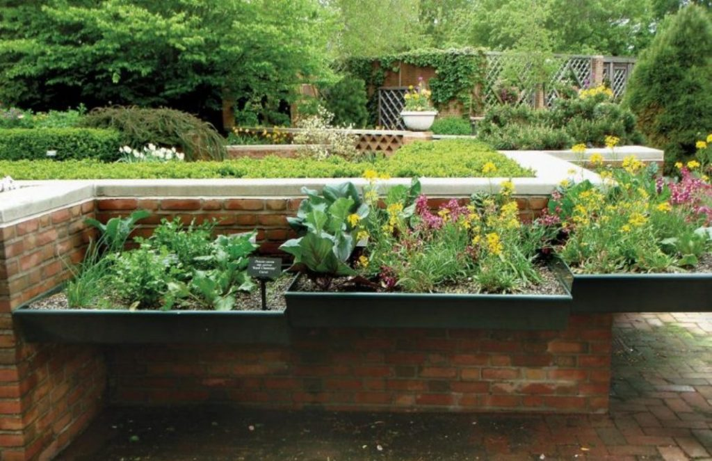 Gardening Tips – Selecting the Right Plants for your Garden