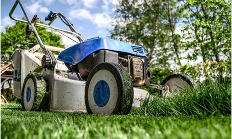 How frequently should you do lawn mowing