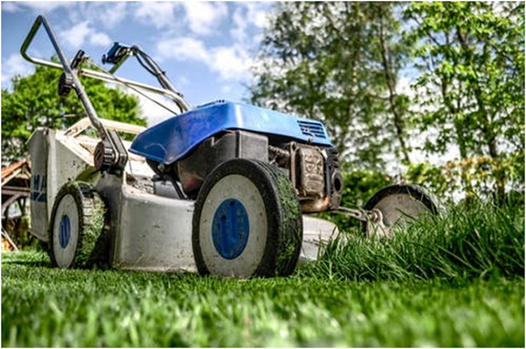 How frequently should you do lawn mowing?
